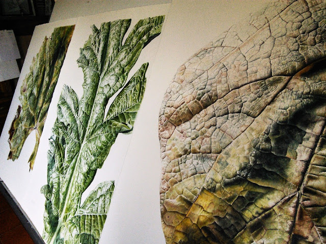 Botanical illustration of leaves by Jessica Rosemary Shepherd