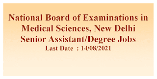 Senior Assistant/Degree Jobs in National Board of Examinations in Medical Sciences, New Delhi