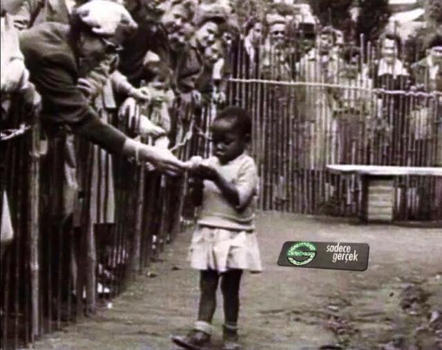 Kölelik ve cariyelik, İnsan hayvanat bahçeleri (Human Zoo)