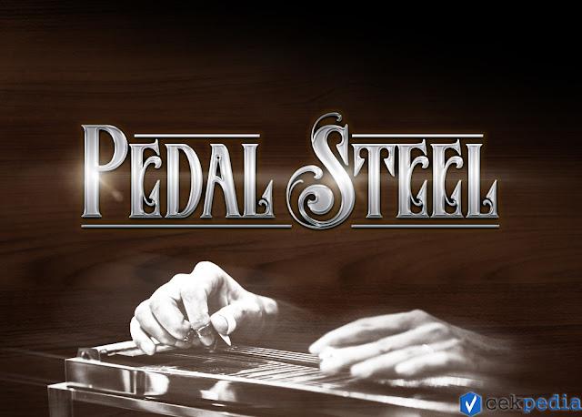 Impact Soundworks Pedal Steel (KONTAKT) - Vstreal