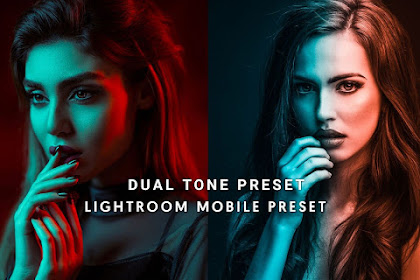 Download Dual Tone Lightroom Preset