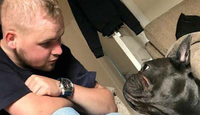 Kedekatan Stuart dan anjingnya, Nero