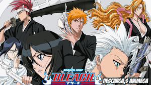 Bleach 366/366 Audio: Japones Sub: Español Servidor: MediaFire