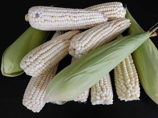 Cómo las mazorcas de maíz nos dicen qué salió bien (y qué salió mal)
