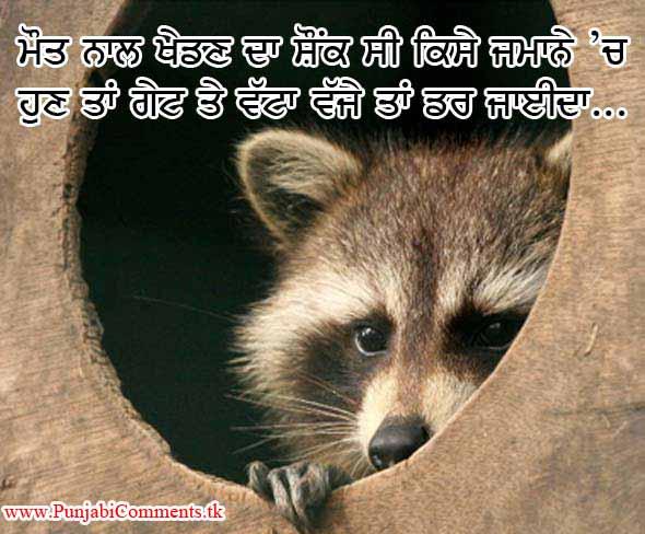 Punjabi Graphics And Punjabi Photos Very Funny Punjabi
