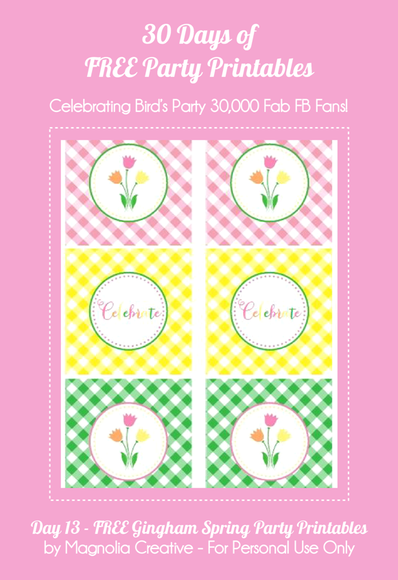 Free Printable Gingham Spring Party Kit - via BirdsParty.com