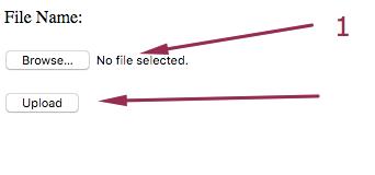 How to Upload Virus