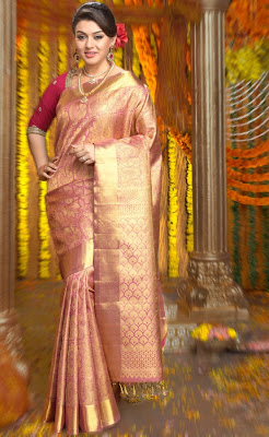 Actress Hansika Motwani in Chennai Silks Ad