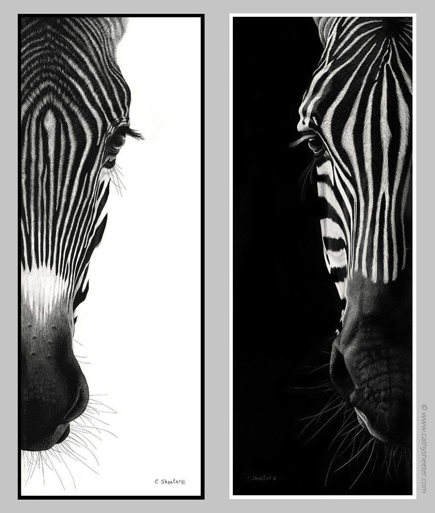 12-Zebras-Cathy-Sheeter-Wildlife-Scratchboard-Drawings-www-designstack-co