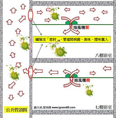 病菌糞管傳染