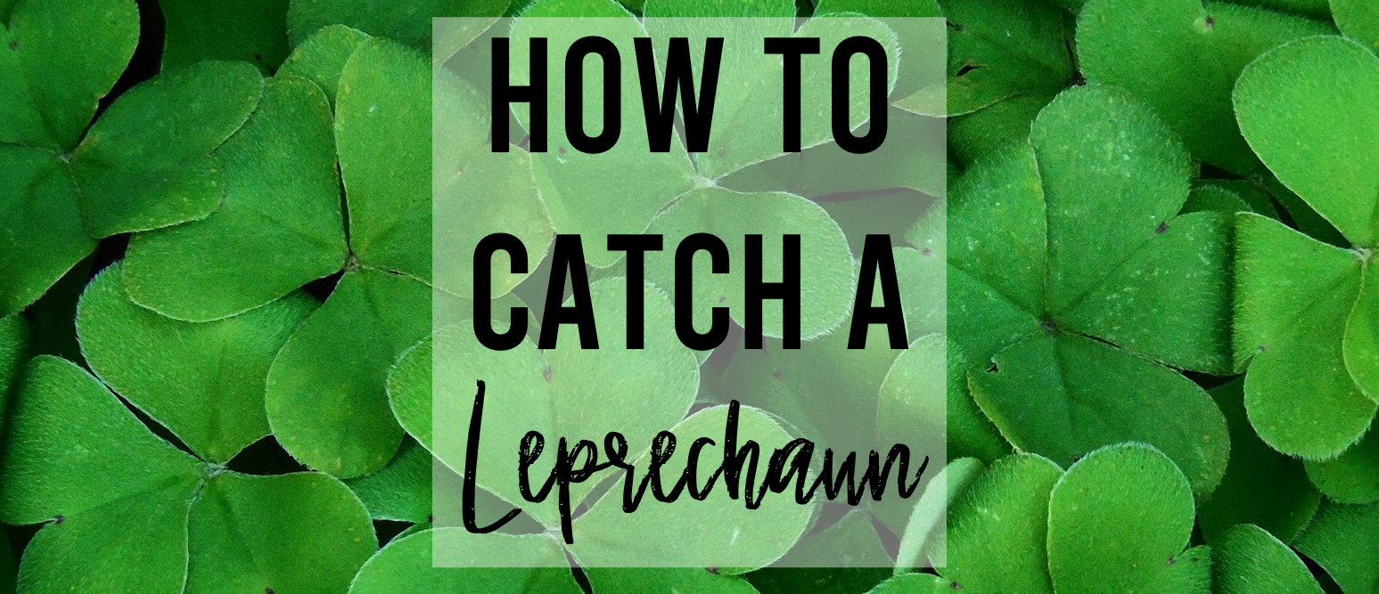 How to Catch a Leprechaun book study literacy unit with Common Core companion activities and a craftivity for grades K-1