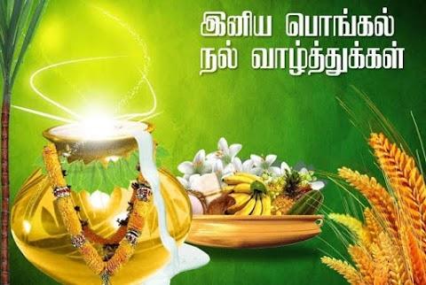 Pongal Wishes | பொங்கல் வாழ்த்து