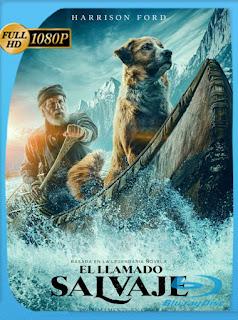 El Llamado Salvaje (The Call of the Wild) (2020) HD [1080p] Latino [Google Drive] Panchirulo