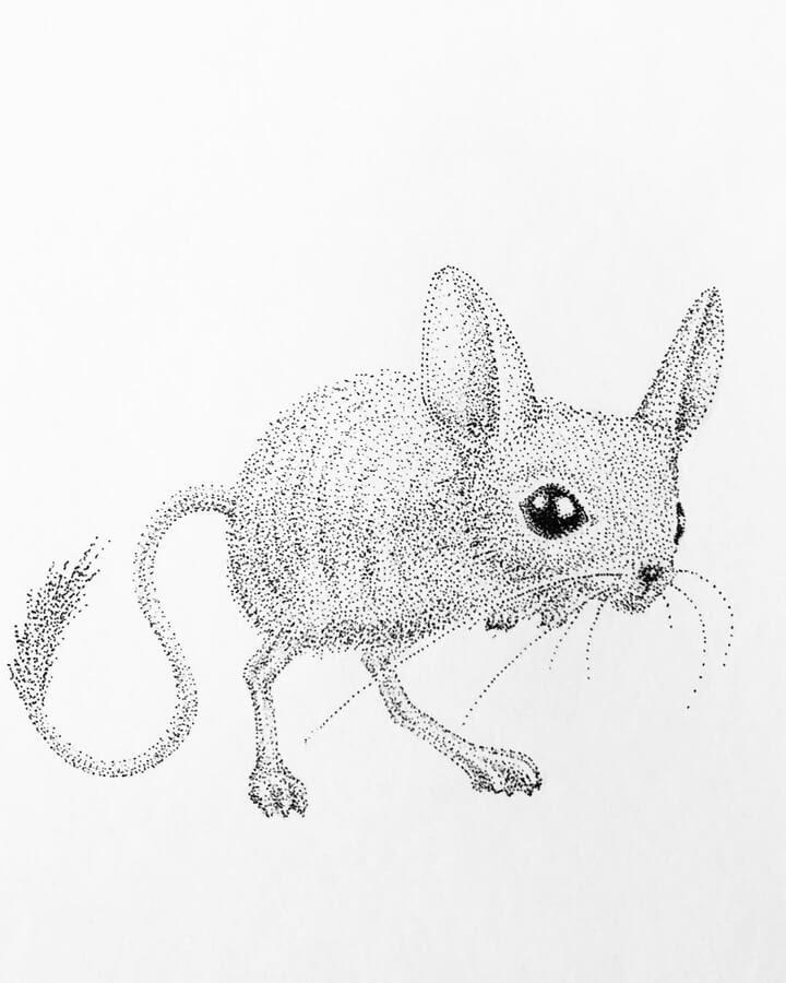 06-Jumping-mouse-Maria-Lecanda-www-designstack-co