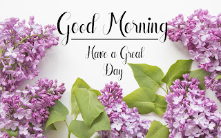 Good Morning Royal Images Download for Whatsapp Facebook41