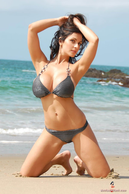 Denise-Milani-Beach-Silver-bikini-hottest-photoshoot-pics-15