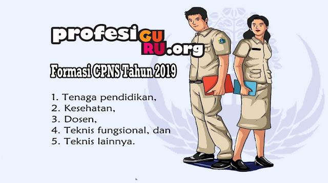 Formasi PENERIMAAN CPNS 2019