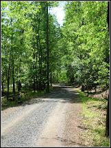 Songbird Cabin Morrow Mountain State Park-uwharrie Mountains