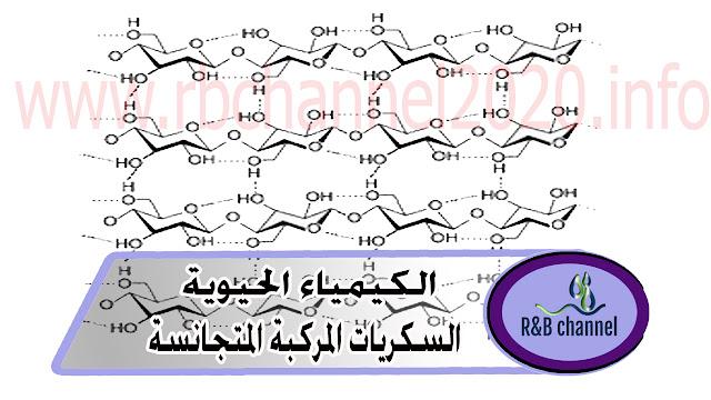 السكريات المركبة المتجانسة - كيمياء حيوية