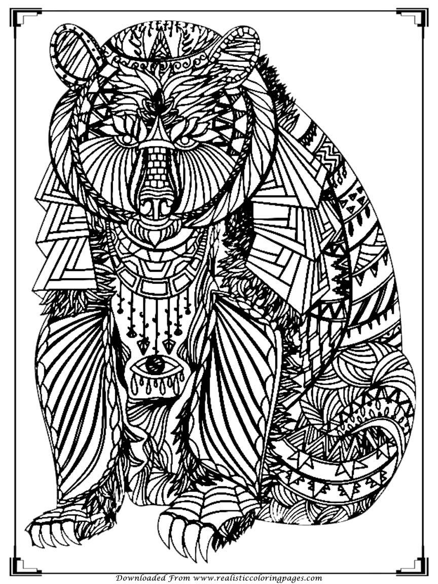 Bear Coloring Pages For Adult Printable  Realistic -6013