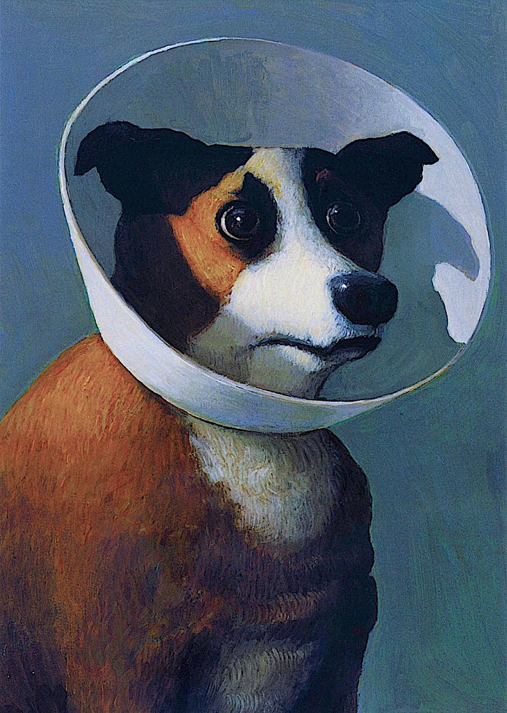 Michael Sowa, a dog in a head cone