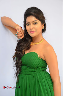 Actress Sai Akshatha Pictures at Shekaram Gari Abbayi First Look Launch  0086.JPG