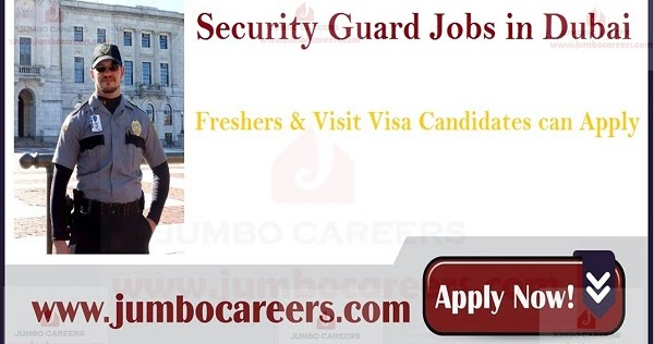 Sector Security Jobs