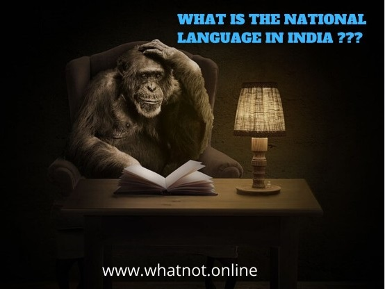 WHAT  IS THE NATIONAL LANGUAGE IN INDIA