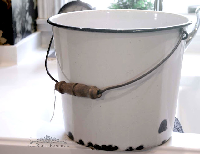 Vintage Enamel Bucket Planter, Bliss-Ranch.com