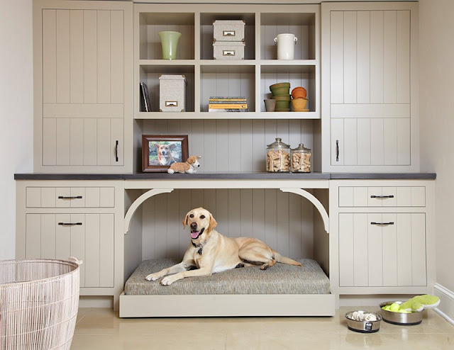 Guest blog: How to design the perfect pet nook for your furry friend