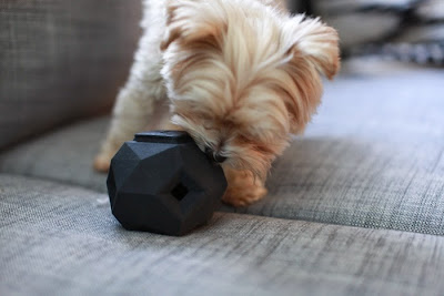 Smart Modular Gadgets - Modular Dog Toy (15) 3