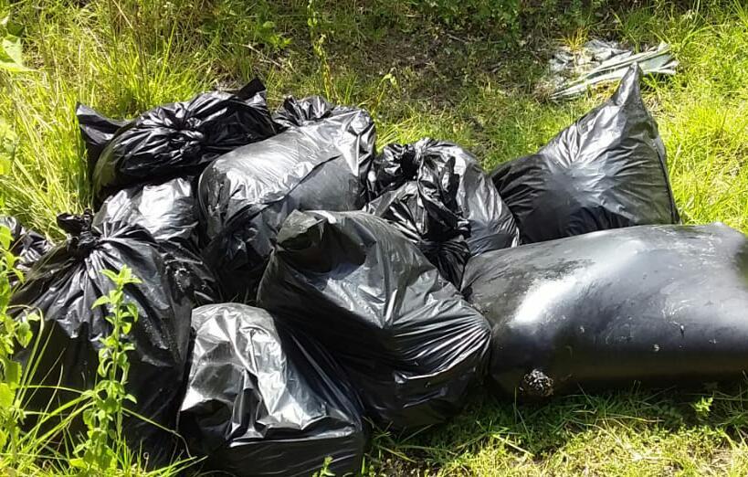 FOTOS, Sicarios dejan macabra carnicería en 12 bolsas repletas de cuerpos destazados junto a un torso desmembrado en Veracruz