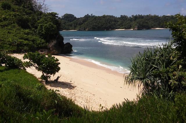 Gambar Pantai Savana