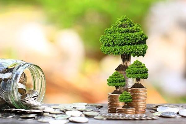 Как правильно инвестировать в облигации в 2021 году