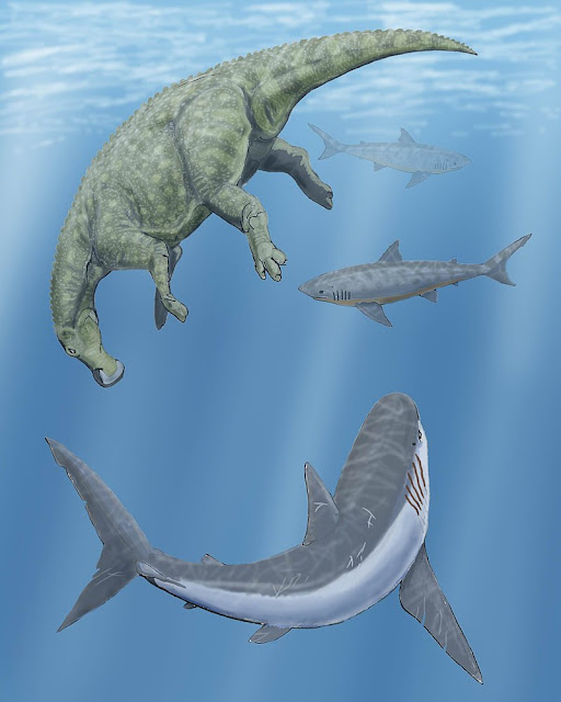 Cretoxyrhina and two Squalicorax sharks circle a floating Claosaurus