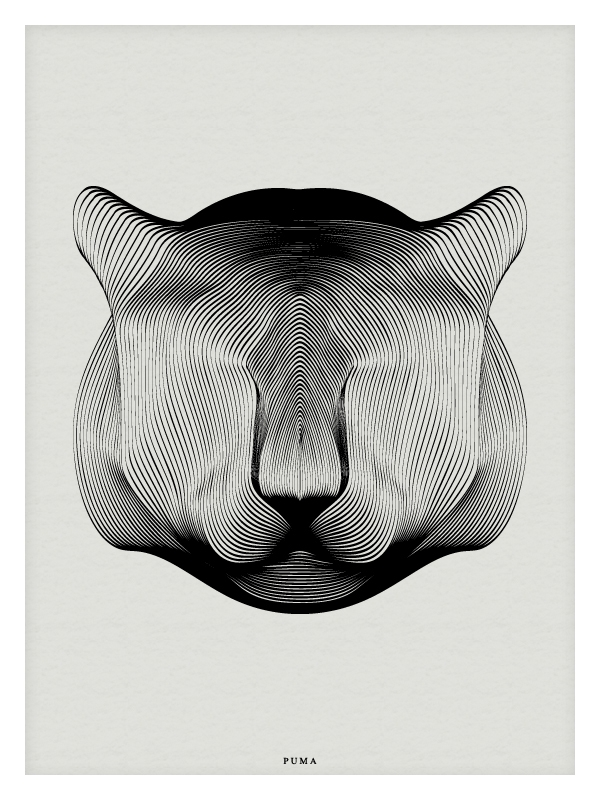 10-Puma-Andrea-Minini-Minimalist-and-Highly-Stylized-Drawings-www-designstack-co