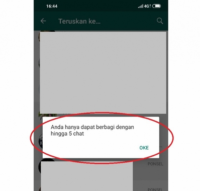 chat forward WhatsApp