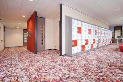 pavimento 3d-arredamento