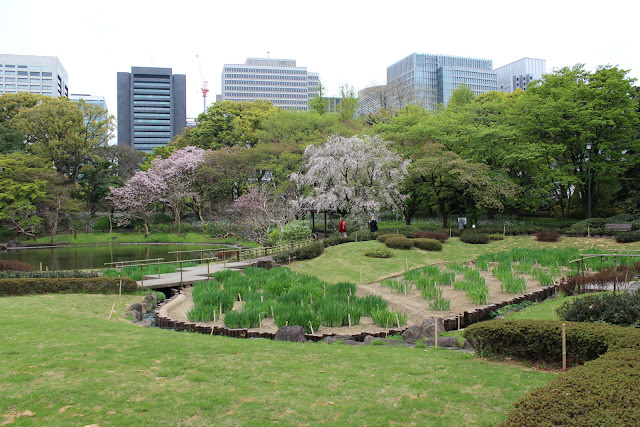 Nature blended with modernity, East Garden, Tokyo