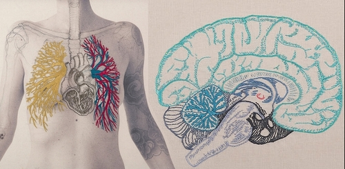 00-Juana-Gómez-Embroidered-Anatomy-exposing-Internal-Physiology-www-designstack-co