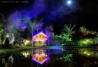 6 điểm chụp hình đẹp như mơ ở Lâm Đồng 9