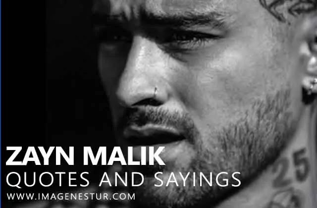 Zayn Malik Instagram Captions, Quotes, Sayings from Zayn Malik Songs Lyrics for Insta BIO