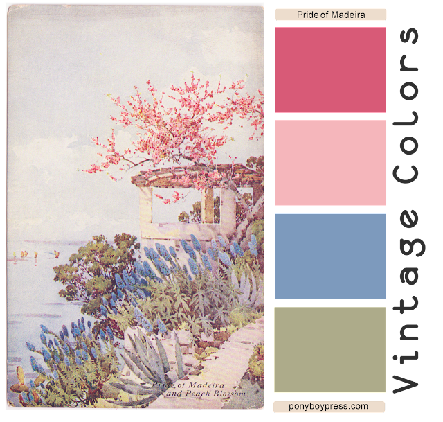 Vintage Color Palette - Pride of Madeira - read more and see hex codes on the blog ponyboypress.com