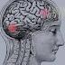 أعراض وأسباب مرض تآكل خلايا المخ