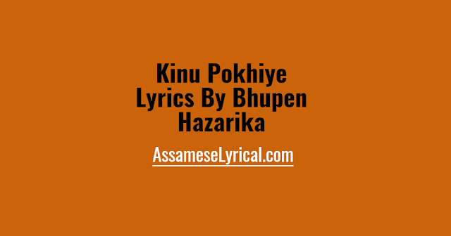 Kinu Pokhiye Lyrics