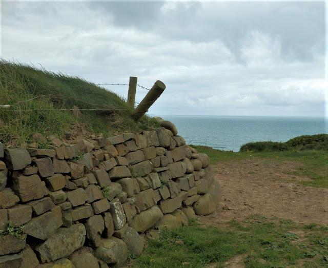 Cornish stone wall by the sea