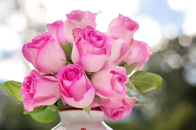 الورود الجميلة بالصور