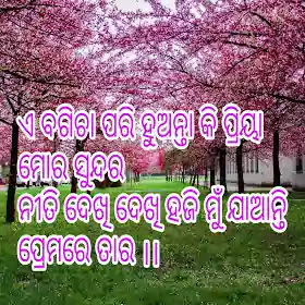 Love describe for love story Odia shayari