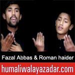 https://www.humaliwalyazadar.com/2019/02/fazal-abbas-roman-haider-noha-ayyam-e.html