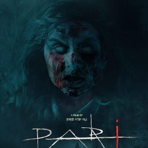 Pari (2018) Full Movie Download  480p 720p 1080p